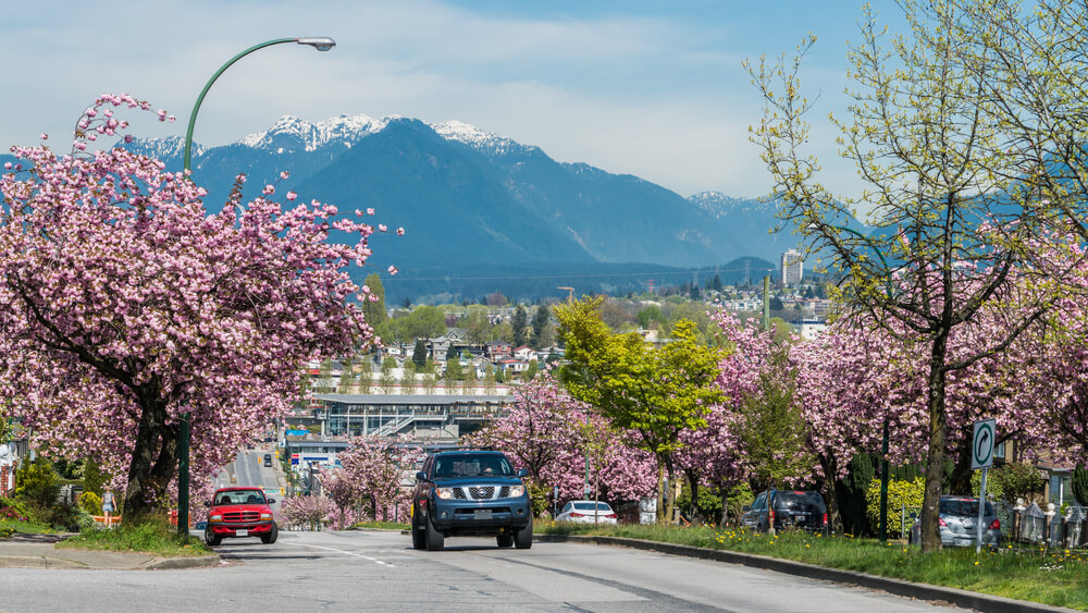 exploring vancouver by car