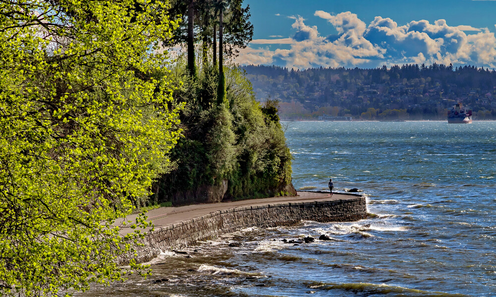 Stanley Park and Seawall